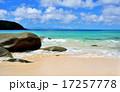 青く透明な海と白い砂浜/種子島 17257778