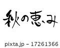 秋の恵み 筆文字 17261366
