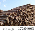 木材 17264993