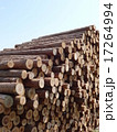 木材 17264994