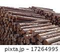 木材 17264995