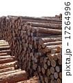 木材 17264996