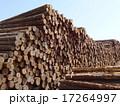 木材 17264997