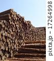 木材 17264998