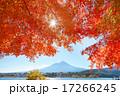 紅葉と富士山 17266245