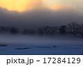 朝霧 北上市 雪原の写真 17284129