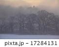 朝霧 北上市 雪原の写真 17284131