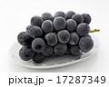 果物 巨峰 果実の写真 17287349