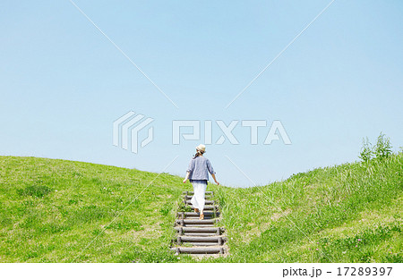 丘を登る女性 17289397
