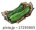zuchini15831pix7 17293803
