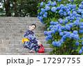 和服 女性 紫陽花の写真 17297755