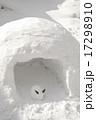 かまくら 雪うさぎ 17298910
