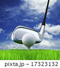 Golf 17323132