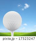 Golf course 17323247