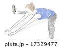 エクササイズ 柔軟体操 女性のイラスト 17329477