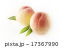 果実 ピーチ 果物の写真 17367990