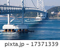 鳴門大橋 橋 つり橋の写真 17371339