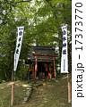 鎮守の森の小さな神社 17373770