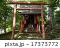 鎮守の森の小さな神社 17373772