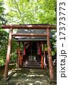 鎮守の森の小さな神社 17373773