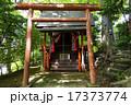 鎮守の森の小さな神社 17373774