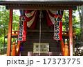 鎮守の森の小さな神社 17373775