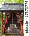 鎮守の森の小さな神社 17373776