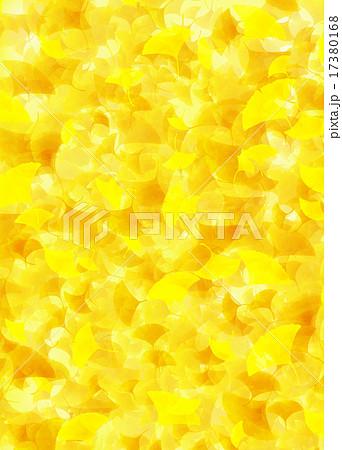 イチョウのじゅうたん 17380168