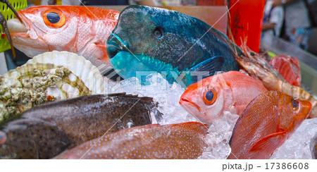 沖縄の魚介類 17386608