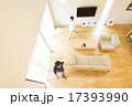 リビング インテリア 自然光の写真 17393990