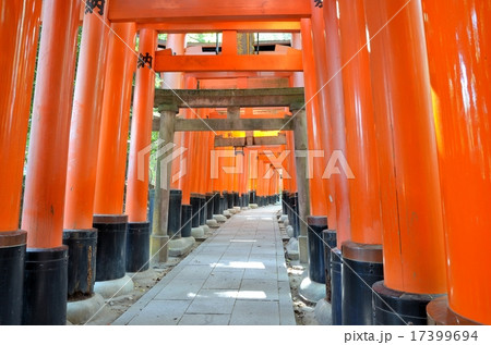 京都 伏見稲荷大社 祭場 17399694