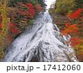湯滝 滝 紅葉の写真 17412060