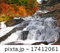 竜頭の滝 滝 紅葉の写真 17412061