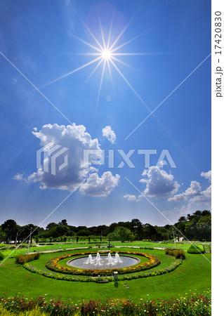 公園 緑イメージ 17420830