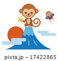 2016年賀状素材:猿と初日の出 17422865
