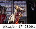 龍踊り 17423091