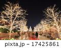 恵比寿ガーデンプレイス ライトアップ イルミネーションの写真 17425861