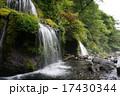 山梨県 吐竜の滝 17430344
