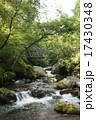 清流と吊り橋 17430348