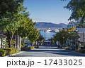 街並 並木 函館の写真 17433025