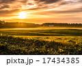 牧場 朝日 朝の写真 17434385