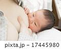 授乳 乳児 母乳の写真 17445980