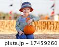 かぼちゃ カボチャ 南瓜の写真 17459260