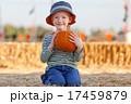 かぼちゃ カボチャ 南瓜の写真 17459879
