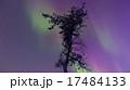 オーロラ 17484133