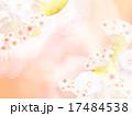 和風 背景 和のイラスト 17484538
