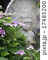 石仏 紫陽花 花の写真 17485200