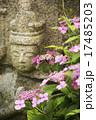 石仏 紫陽花 花の写真 17485203
