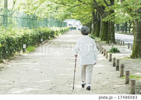 80歳のおばあちゃん 後ろ姿 17486083