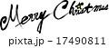英文字 筆文字 ベクターのイラスト 17490811